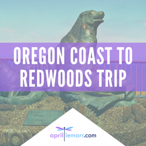 Oregon Coast To Redwoods Trip