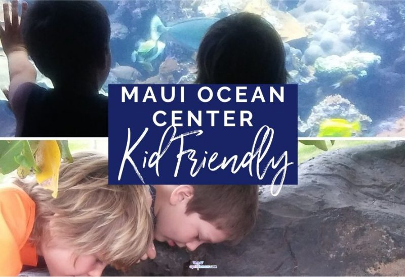 Maui Ocean Center: Kid-Friendly Fun