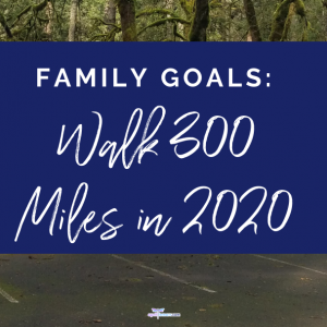 Family Goals: Intentionally Walk 300 Miles In 2020